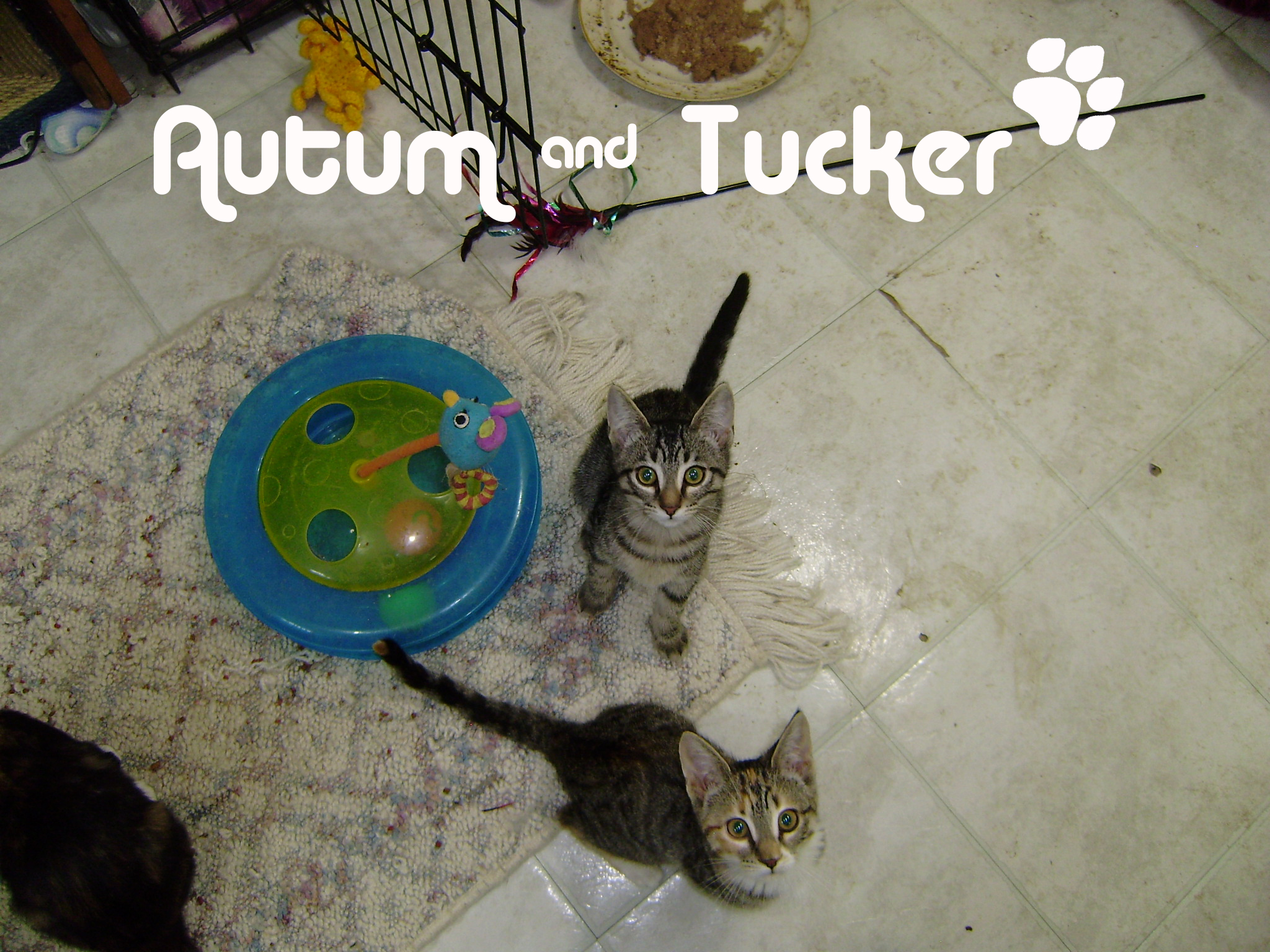 Autum and Tucker