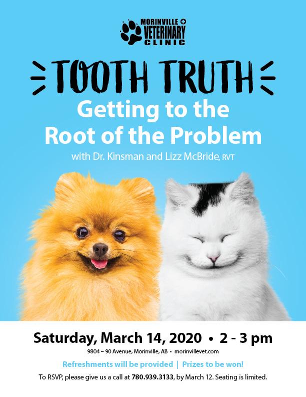 Morinville Dental Education Night Poster