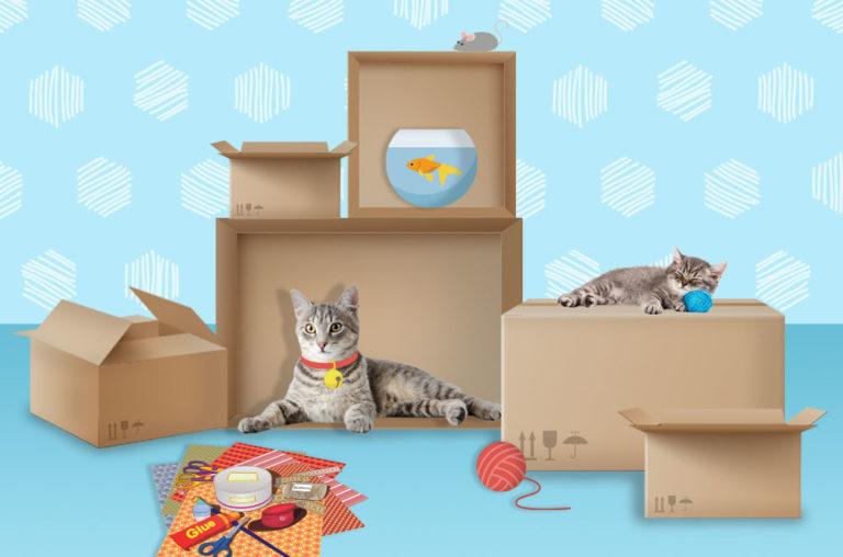 Box castle graphic